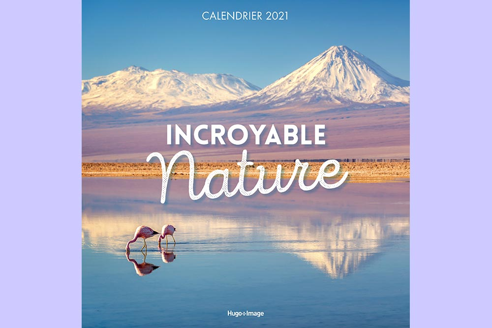 Calendriers muraux - modèle Incroyable Nature