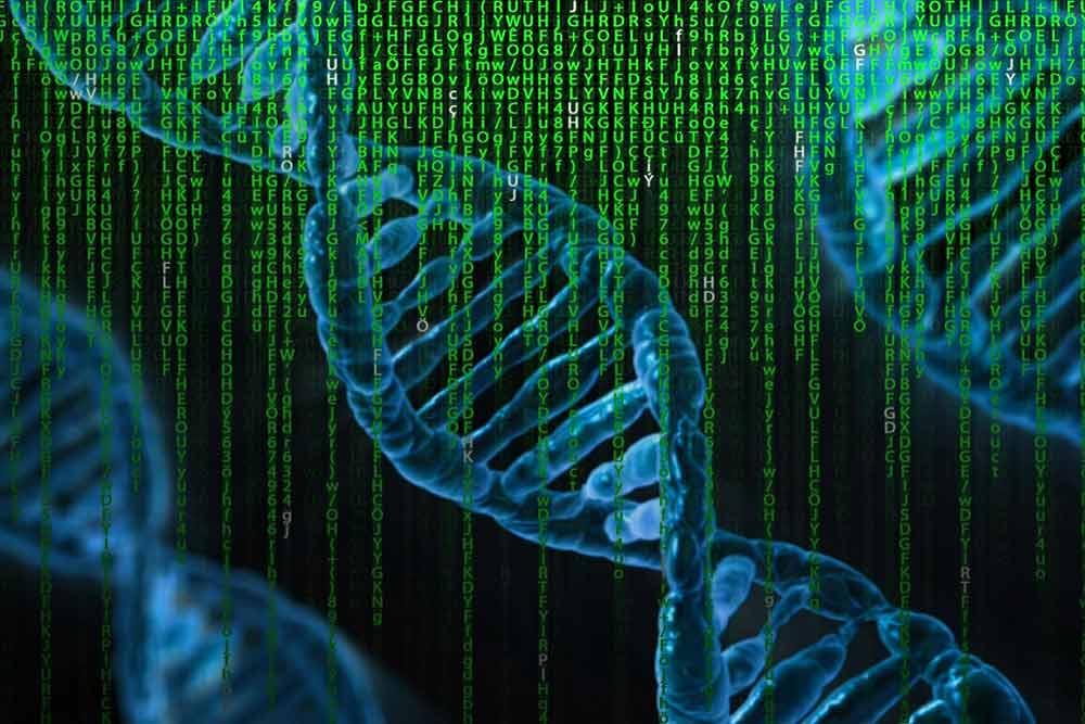 ADN Matrice Génétique