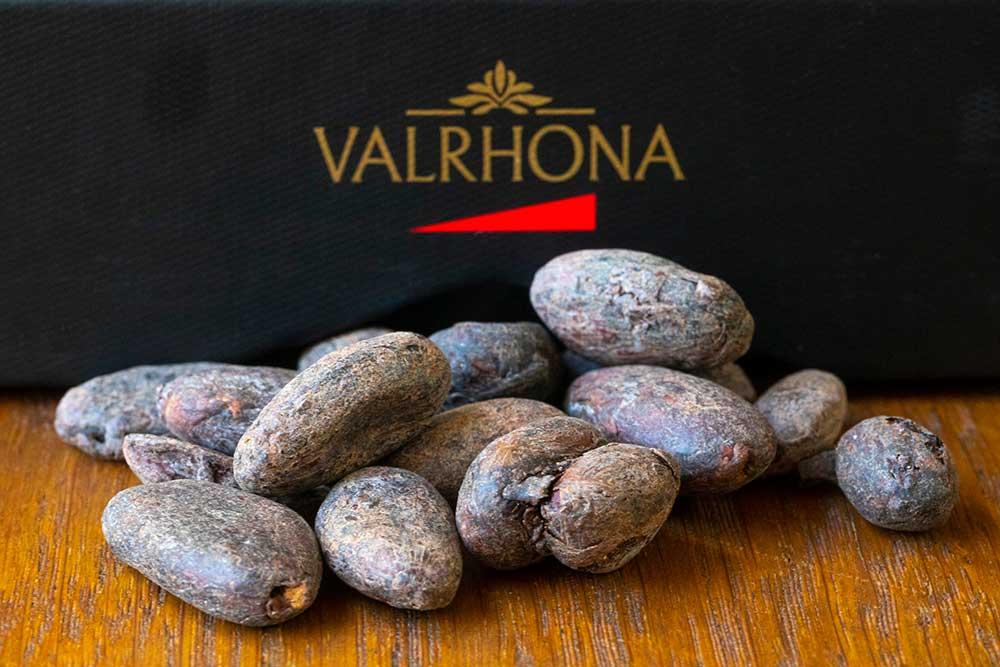 Les fèves, une fois séchées sont prêtes à être travaillée pour devenir pâte de chocolat.