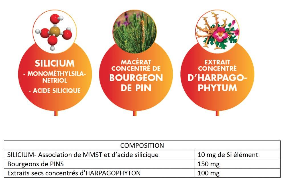 SILIGEMME® Articulations : potentialiser l'activité du silicium par gemmothérapie