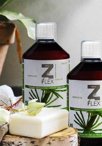 Laboratoire Mint-e- Z - Flex