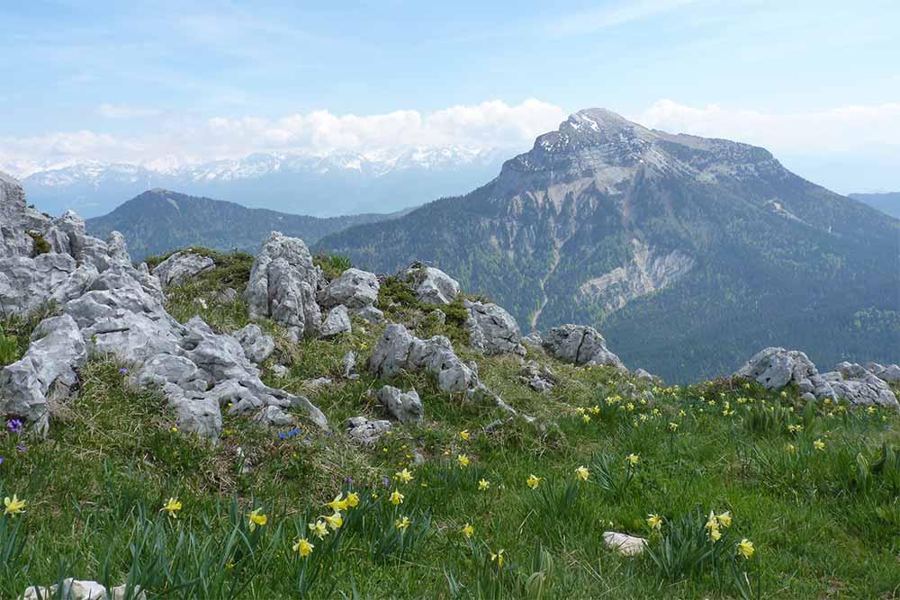 La Chartreuse et son beau sommet