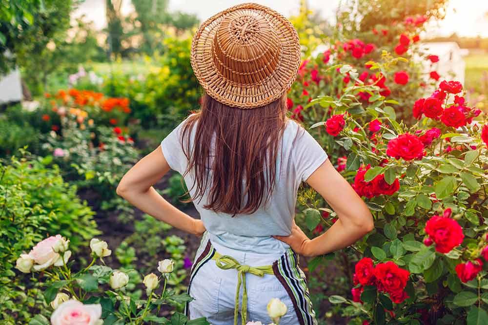 Vive le jardinage et le plaisir d'admirer ses plantations