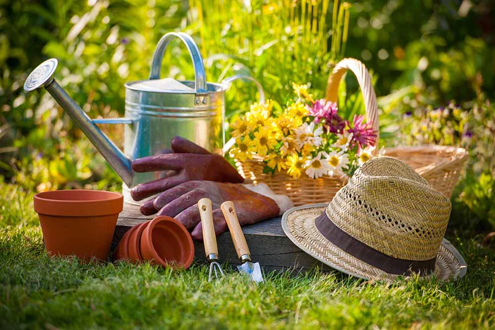 Pour jardiner, il faut avoir les bons outils