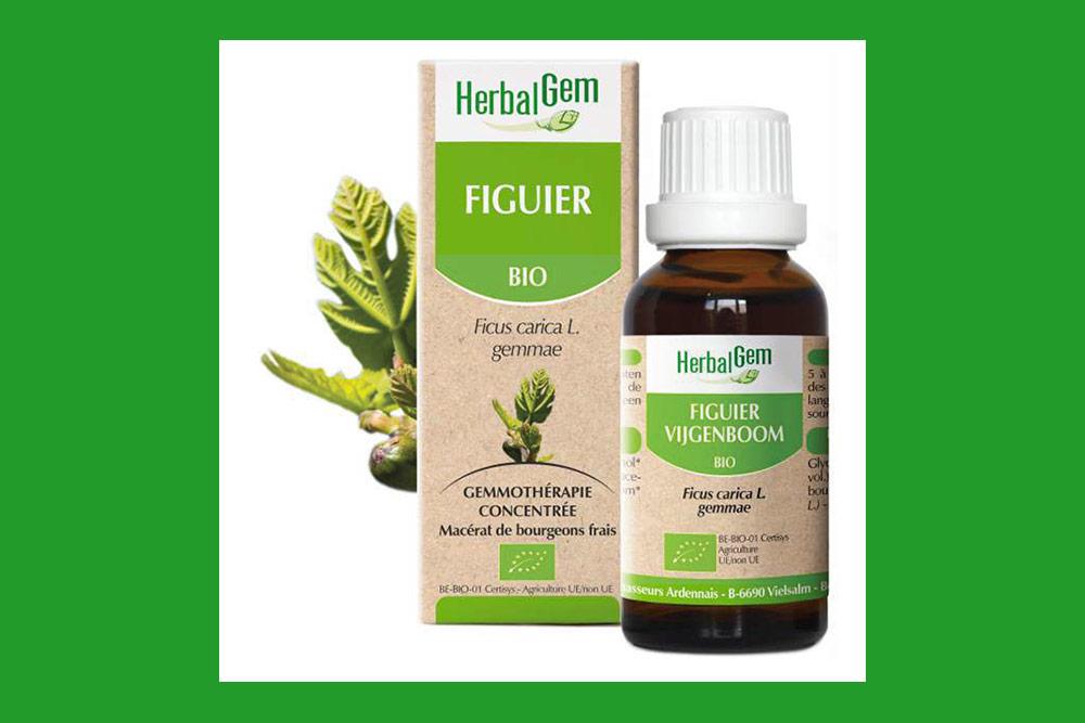 Le Figuier bio HerbalGem calme l'anxiété