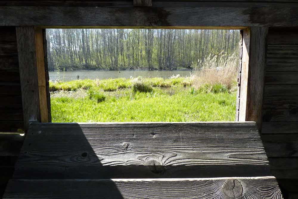 De ma fenêtre… (Observatoire à oiseaux, lac de l'Ailette).