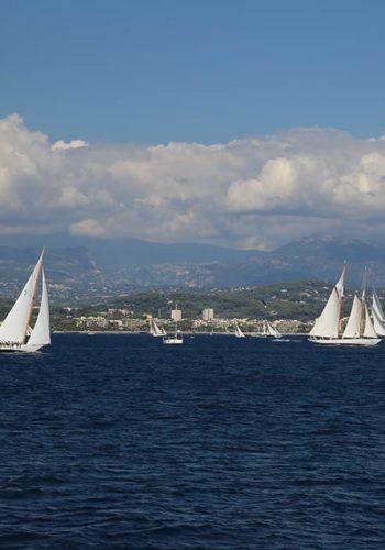 Les voiliers voguent dans la baie de Cannes